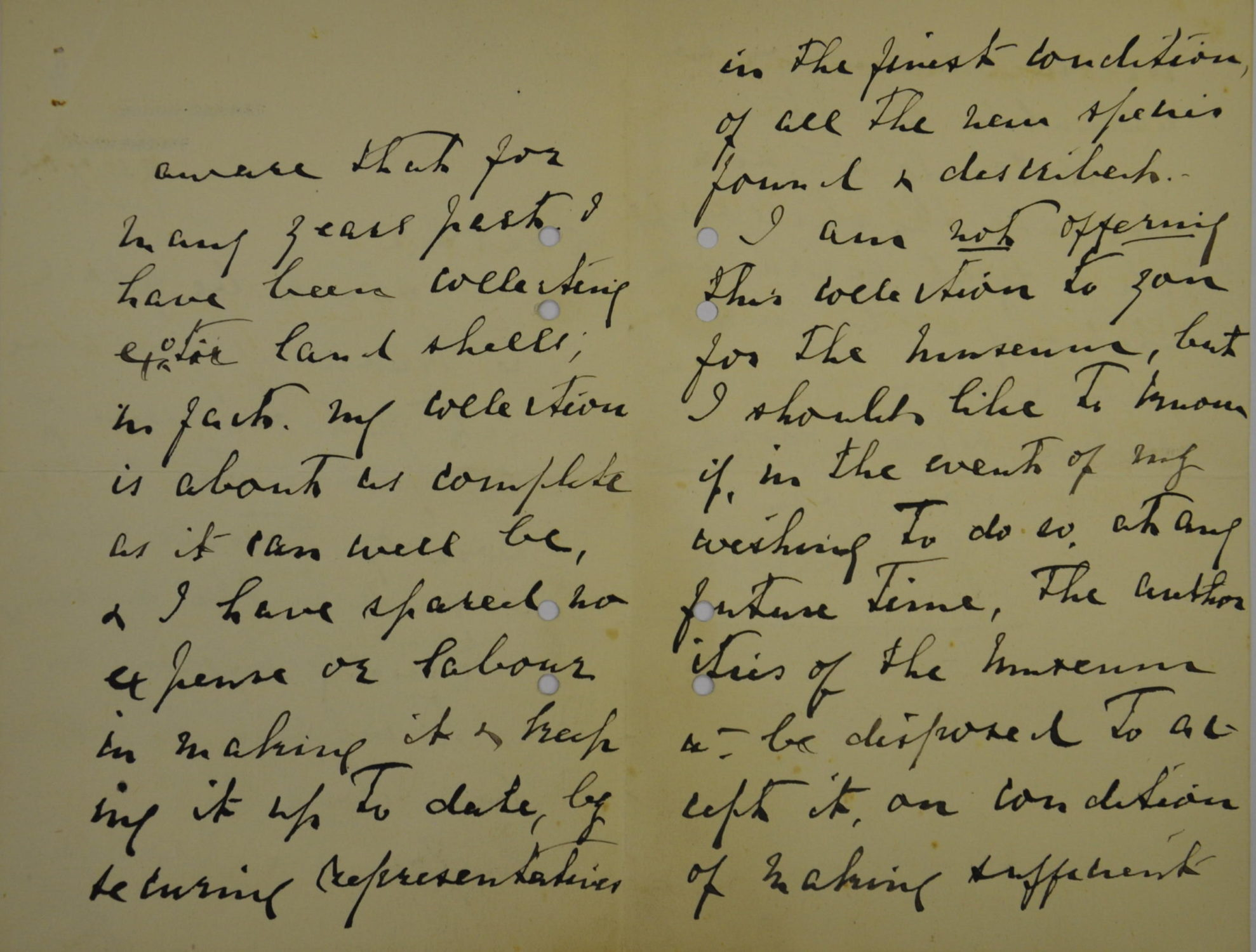 25 July 1902 Letter from Miss Linter to F.R Rowley